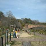 りんくう公園