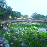"""""""山田池公園"""""""