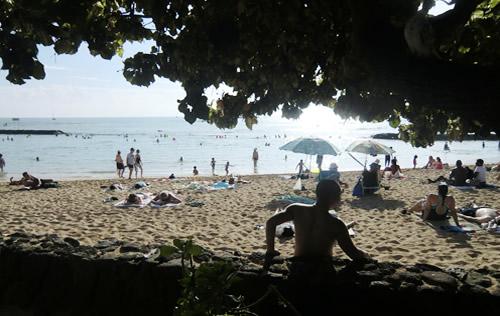 世界一のおそとへ - アメリカ/ハワイ