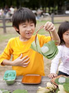 摘み菜を伝える会