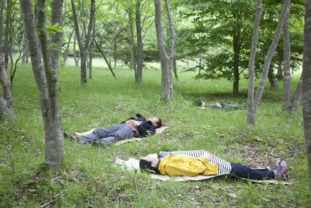 森林セラピー 〜自然が与えてくれる癒し from高野山〜