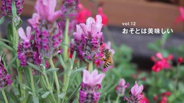 都市を豊かにするミツバチ