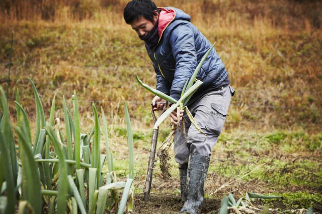 農家の生きる極意は 前向きな諦め
