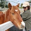 ホースセラピー – 人と馬がつくる、癒しの環