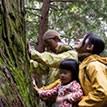 森林セラピー – 自然が与えてくれる癒し from 高野山