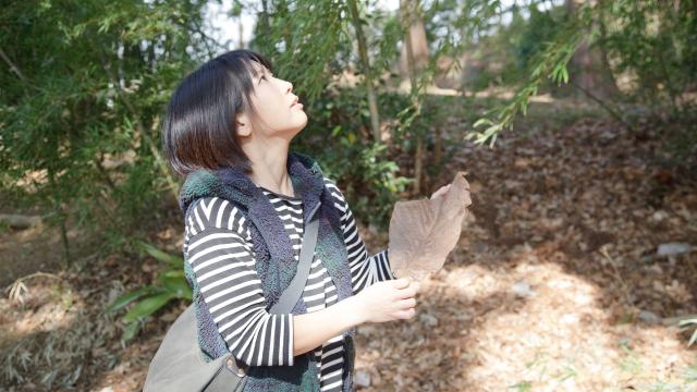 木の生き様を代弁する人間の愛と好奇心