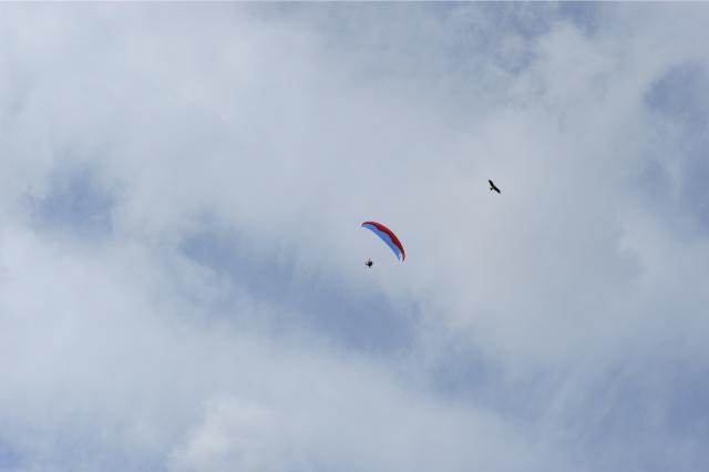 パラモーターを毎週楽しむ中原恵さんに聴く 空を自由に飛ぶことについて